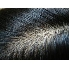 Best Super Nautral Silk Top Base Custom Human Hair Men's Toupee Wigs In Canada